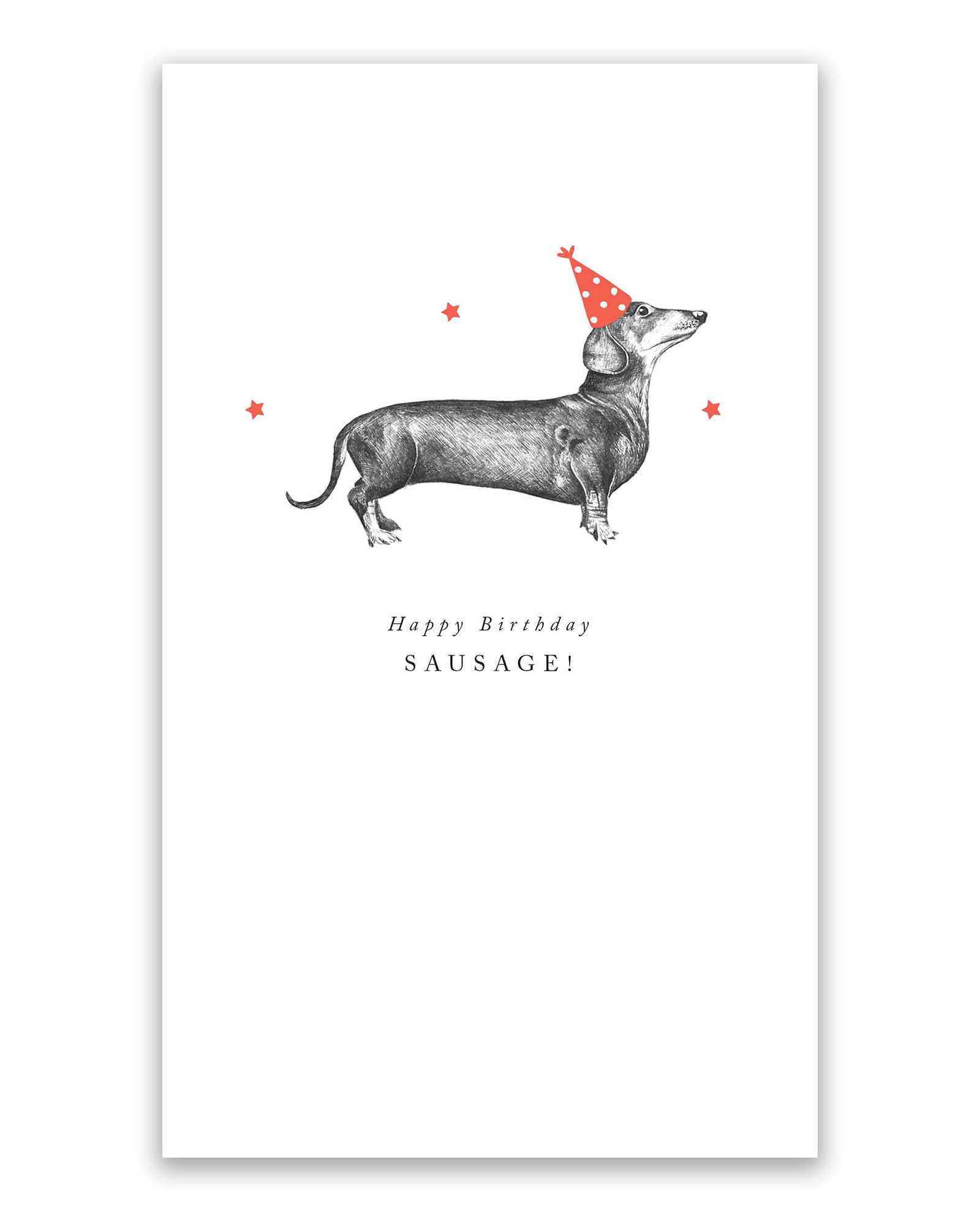 Celebrations Occasions Free Delivery Dachshund Sausage Dog Birthday Card Sarathaarts Ac In